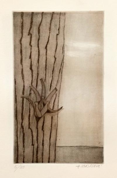 Storchová Hana (1936) : Divný květ