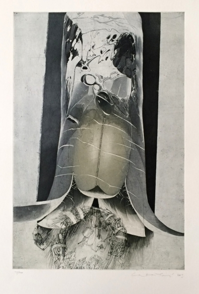 Hašková Eva (1946) : Staré Bělidlo - Viktorka