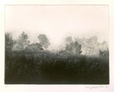 Kaloč Robin (1982) : Krajina v Provance I.
